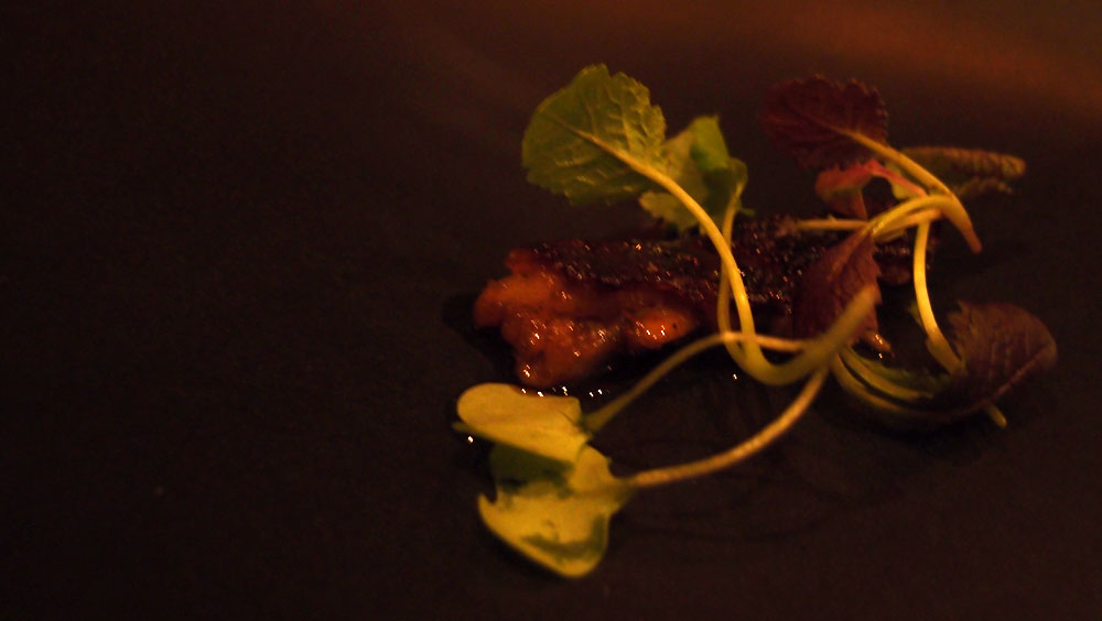 Pork tail, malt, thyme and cabbage