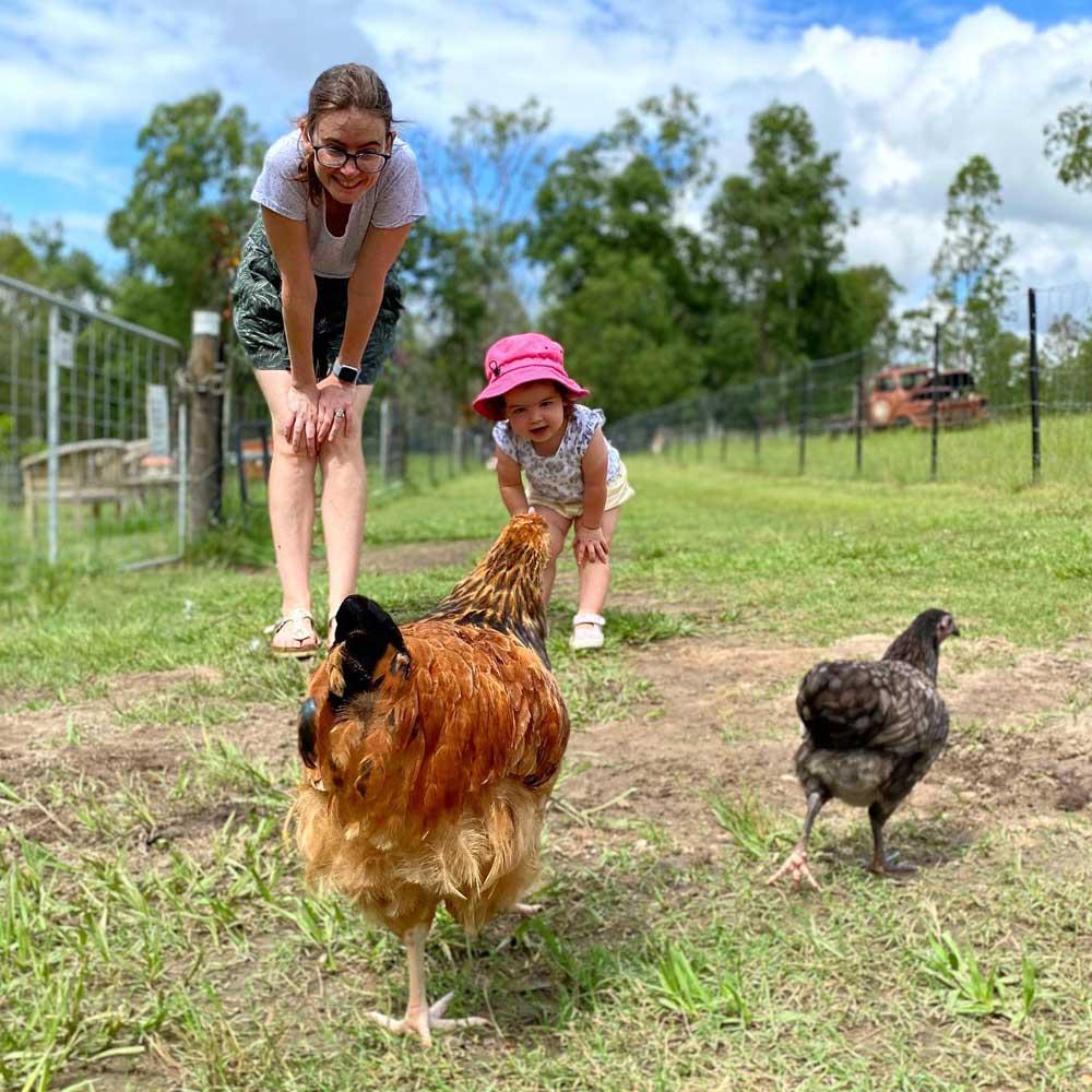 farm-animals