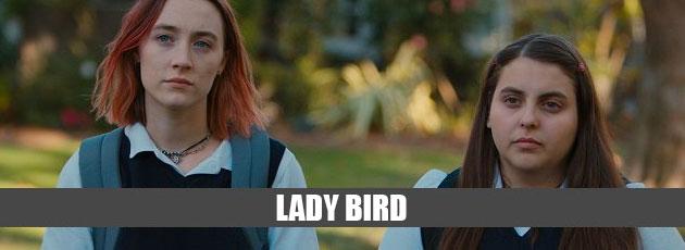 oscarladybird
