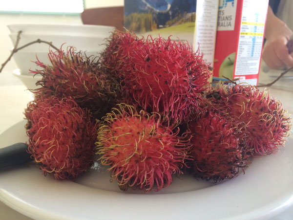 Rambutans!  One of my favourite SE Asian fruits